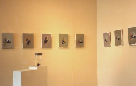 Centre d'Art Contemporain Rouen 1990  (4)